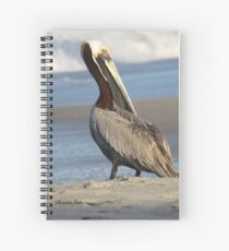 Oceanside Portrait of a Pelican Spiral Notebook
