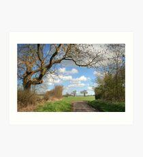 Hertfordshire Lane Art Print