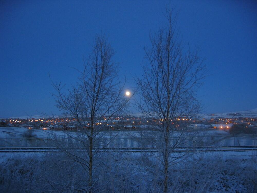 Winter moon by ElegantMess
