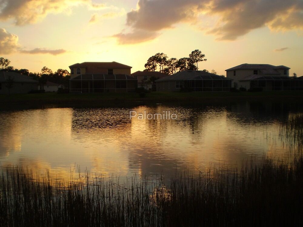 Pond at dusk by Palomillo