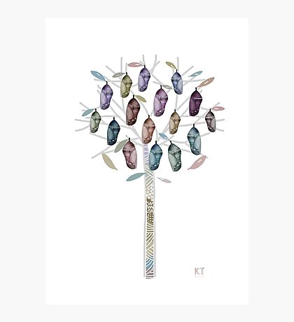 Chrysalis Tree Photographic Print