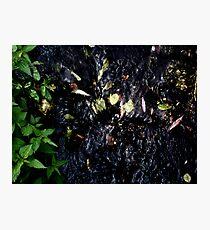 eternity Photographic Print