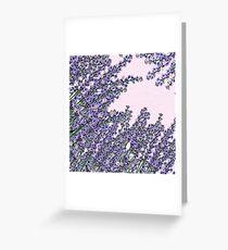 Chic pink purple cute lavender flowers pattern Greeting Card