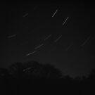 Ursa Major Star Trail by Dave Pearson