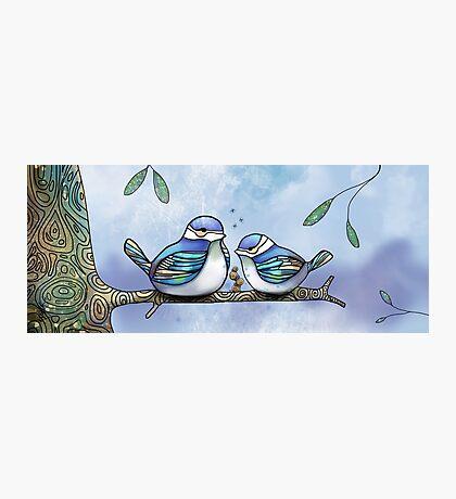 Birds of Blue Photographic Print
