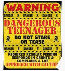 13th Birthday Funny Teenager Design - Warning Dangerous Teenager  Poster