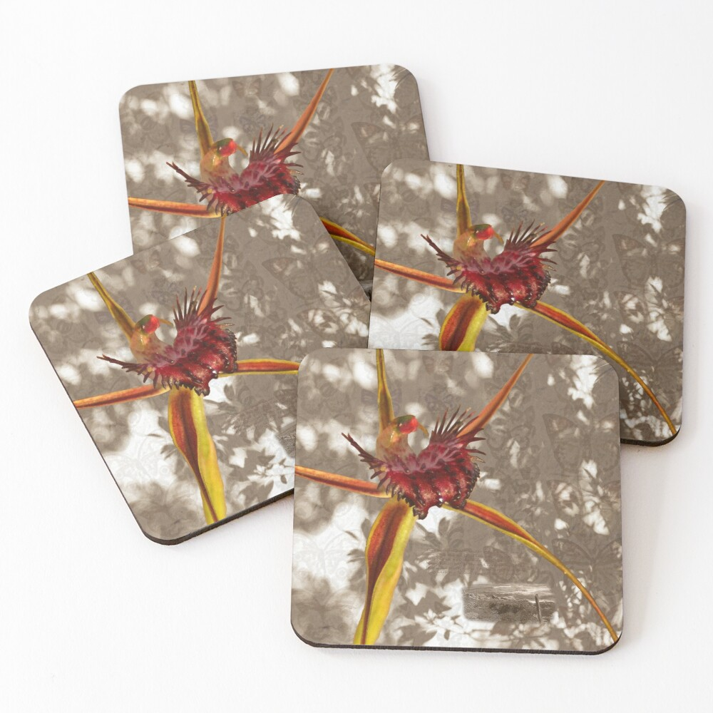 Broadlipped Orchid Photographic montage Coasters (Set of 4)