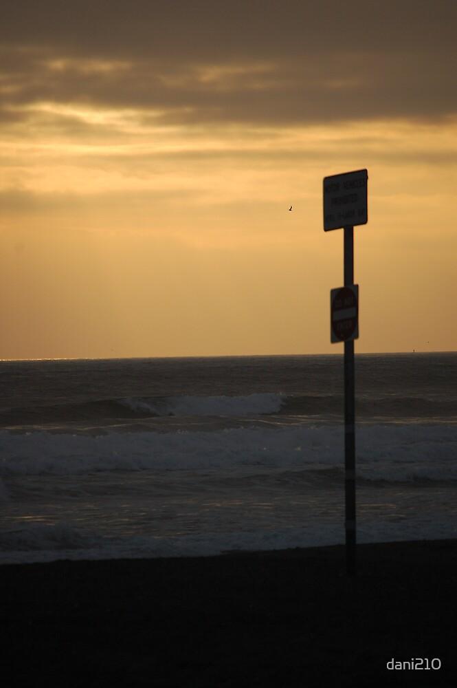 Beach Sign by dani210