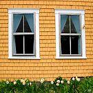 Twin Windows on a Mustard House by Wayne King