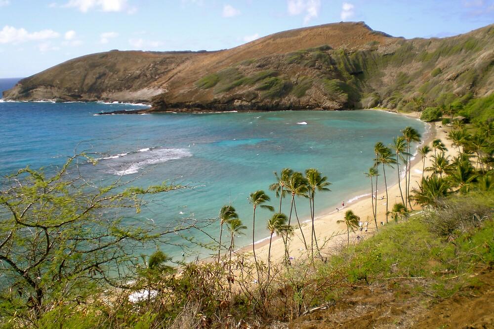 Hanama Bay by pbeltz