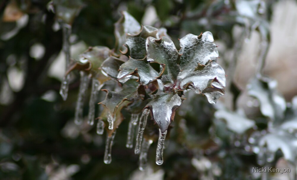 After the ice storm by Nicki Kenyon