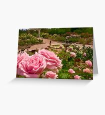 Rose garden perspective Greeting Card