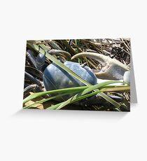 Blue Crab of Florida Greeting Card