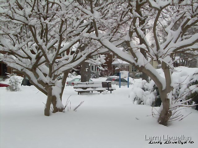 Park Bench after a snowfall by Larry Llewellyn