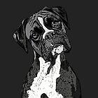Black and White Boxer Art by Chandler Milillo
