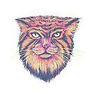 Pallas Cat by Jason Castillo