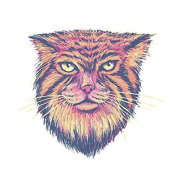 Pallas Cat by jasoncastillo