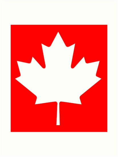 Maple Leaf Canada Canadian White Pure Simple Canadian Flag