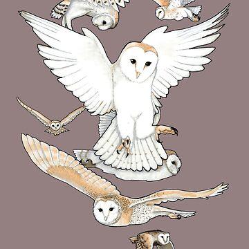 A Parliament of Owls by omnibob8