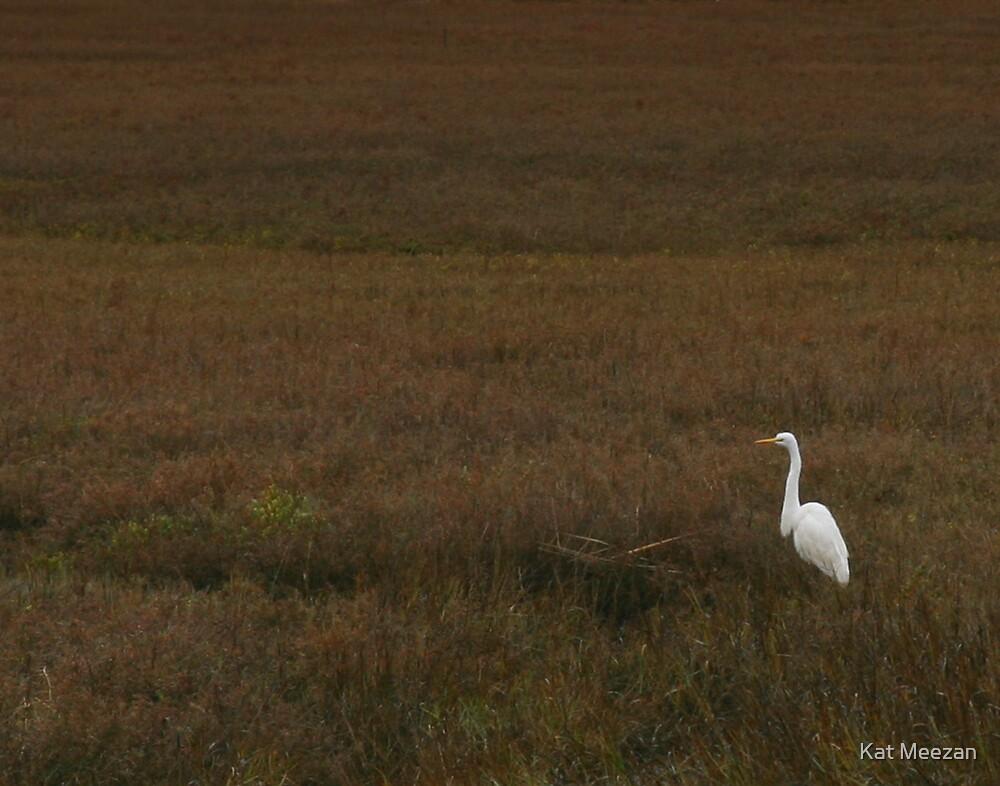 Early Morning Egret by Kat Meezan