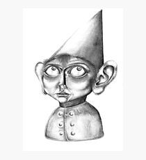 """""""Wirt"""" ; Over the Garden Wall Photographic Print"""