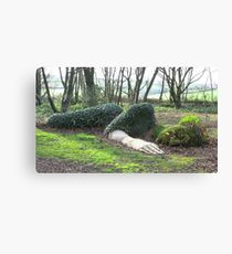 Mud Maid, lost gardens of Heligan Canvas Print