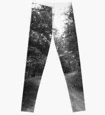 Along a Dark and Lonely Path Leggings