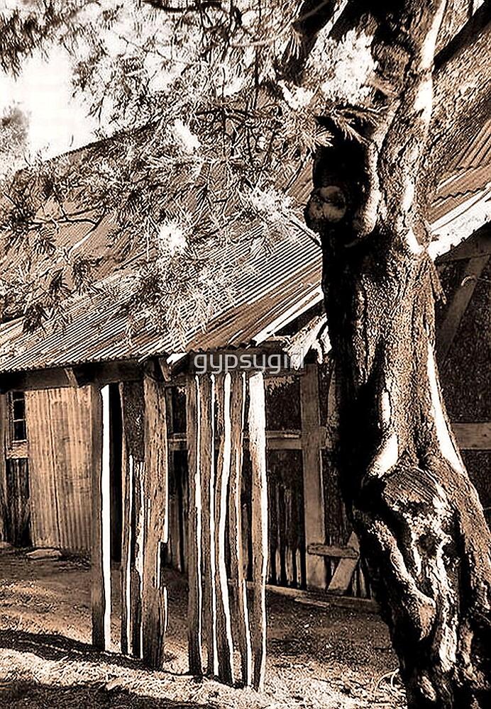Old Hut by gypsygirl