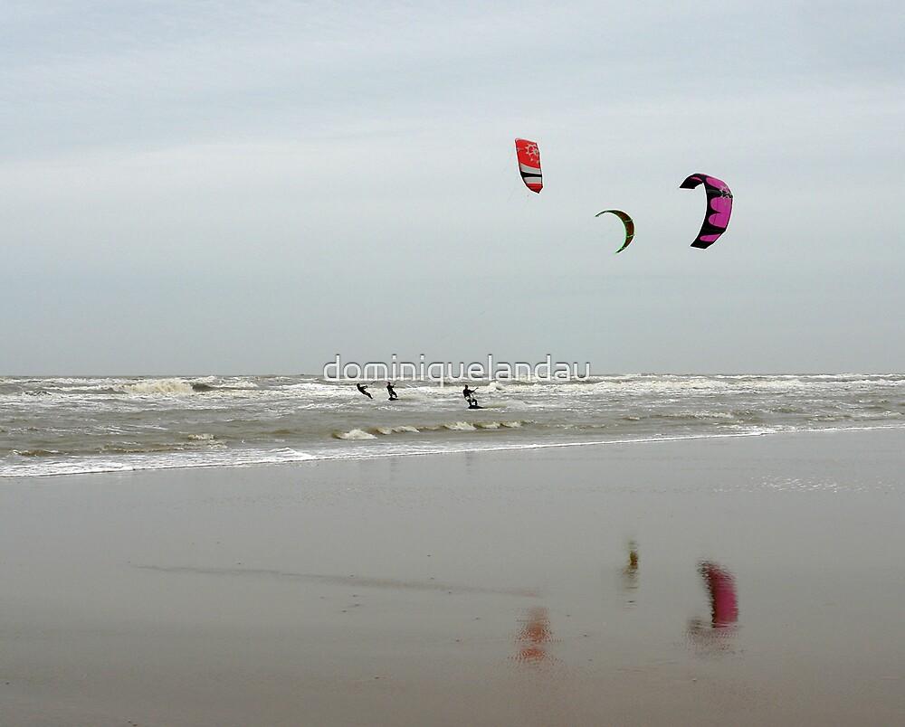 wind surf by dominiquelandau