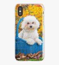 Cute white Bichon Frise puppy sitting in a basket iPhone Case/Skin