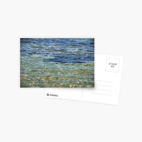 Watercolors Postcard