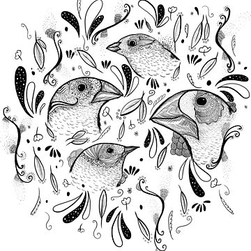 Fine Finches (linework) by ratkiss