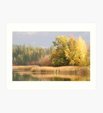 White Mud Lake - Autumn Art Print