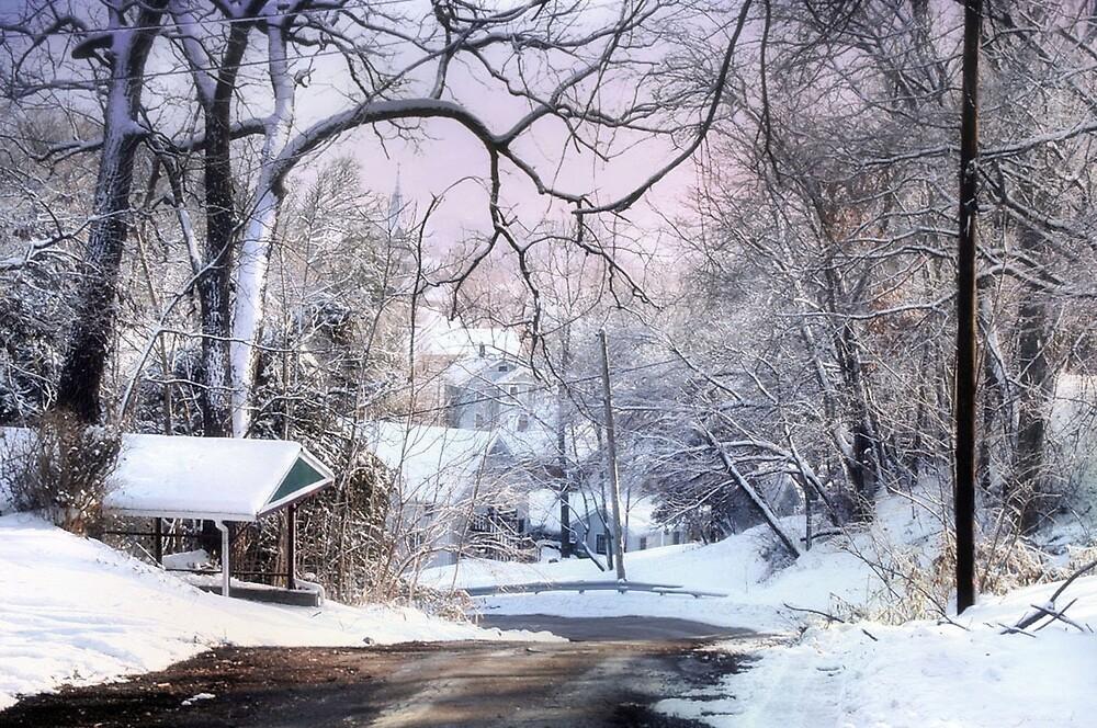 Winter Wonderland by Nadya Johnson