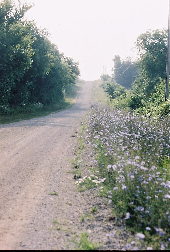 Long Road Ahead by Kerrie Simms