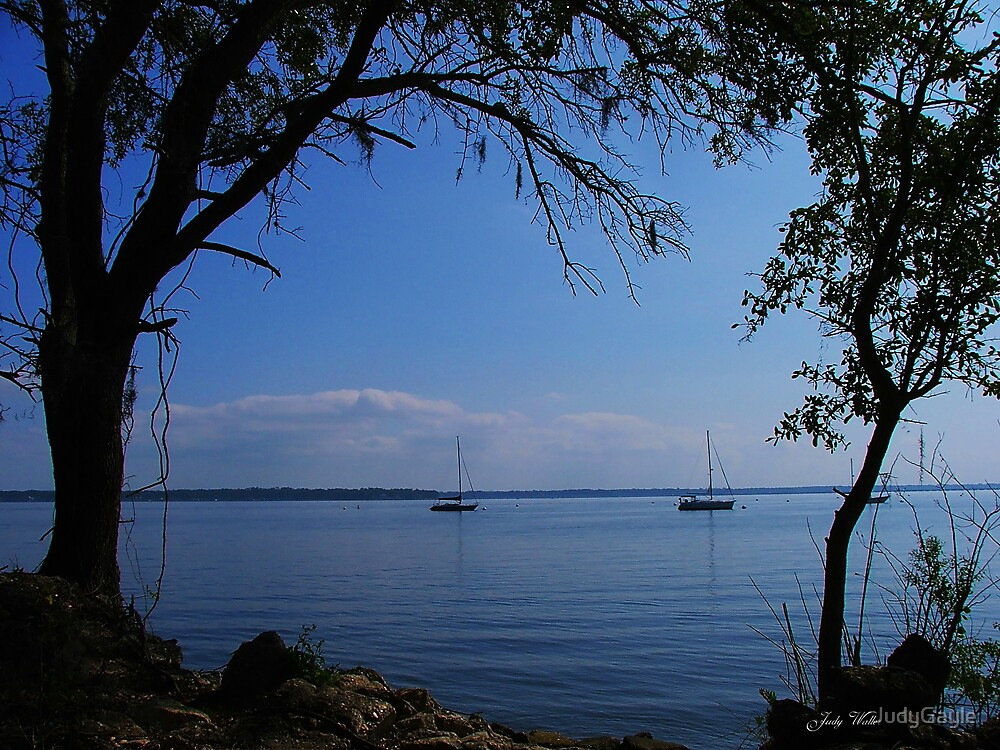 Sailing on the Bay by Judy Gayle Waller