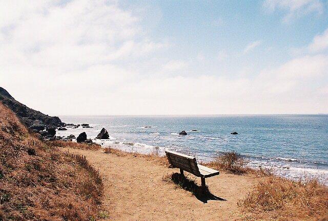 Bench At Muir Beach, CA by stephen hewitt