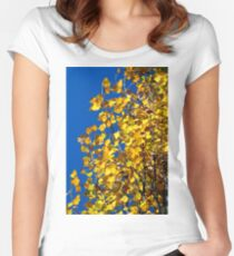 Blue and Gold Women's Fitted Scoop T-Shirt