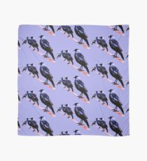 Four magpies and a  Kookaburra Scarf