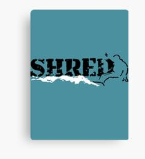 snowboard shred Canvas Print
