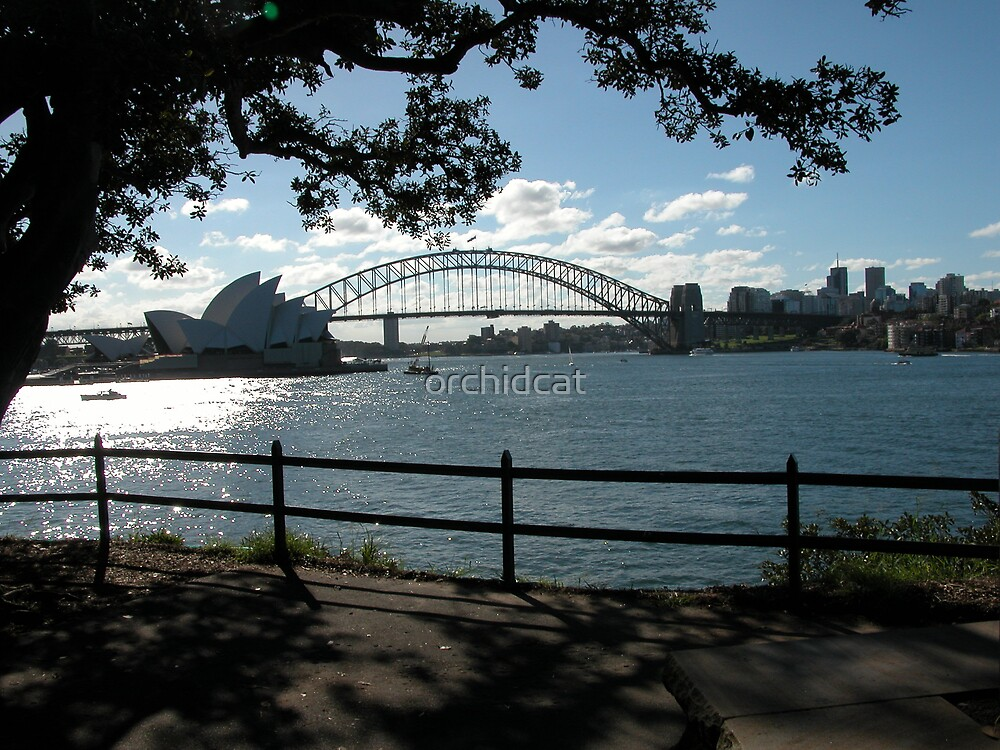 Sydney Harbour Bridge and Opera House by orchidcat