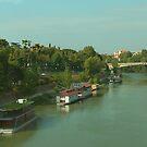 Houseboats on the Tiber III by Tom Gomez