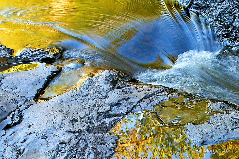 Autumn Riches by Bill Morgenstern
