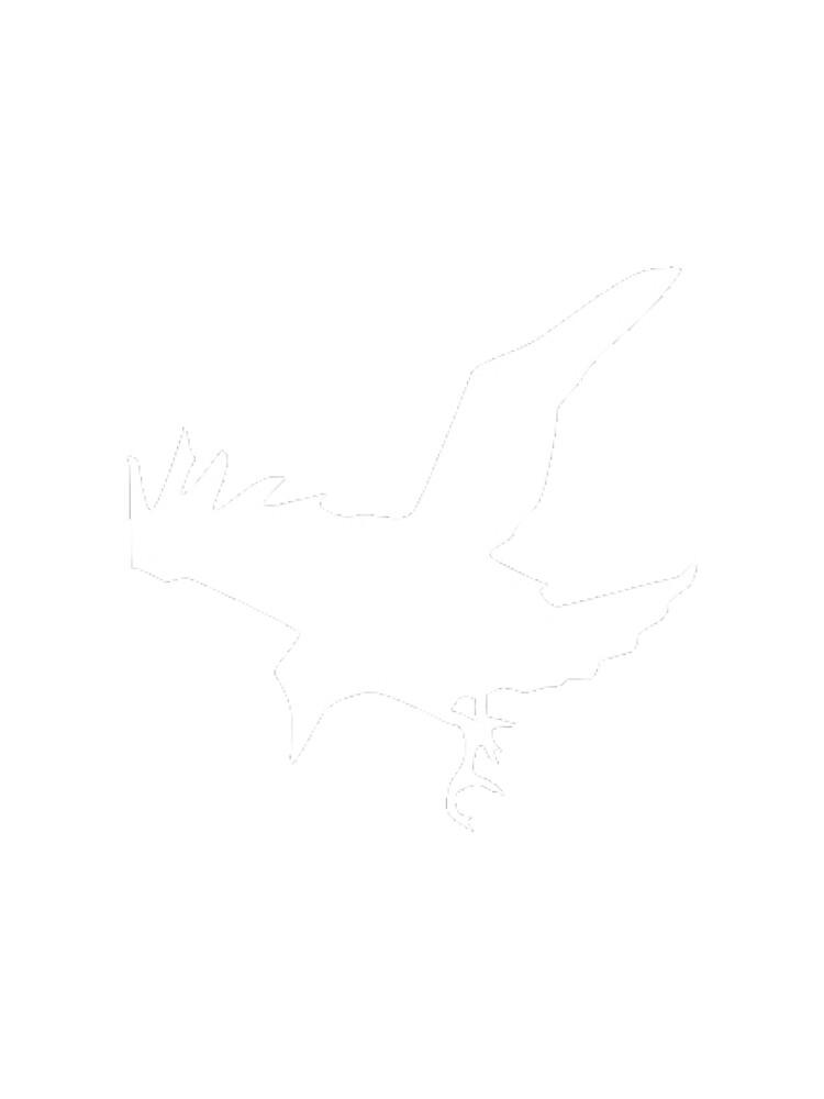 Bird by conradknight