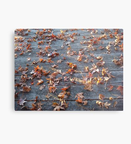 "This is why they call ""Autumn"", ""Fall""! Metal Print"