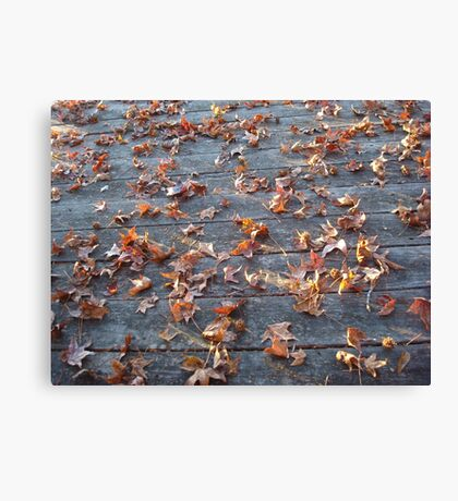 "This is why they call ""Autumn"", ""Fall""! Canvas Print"