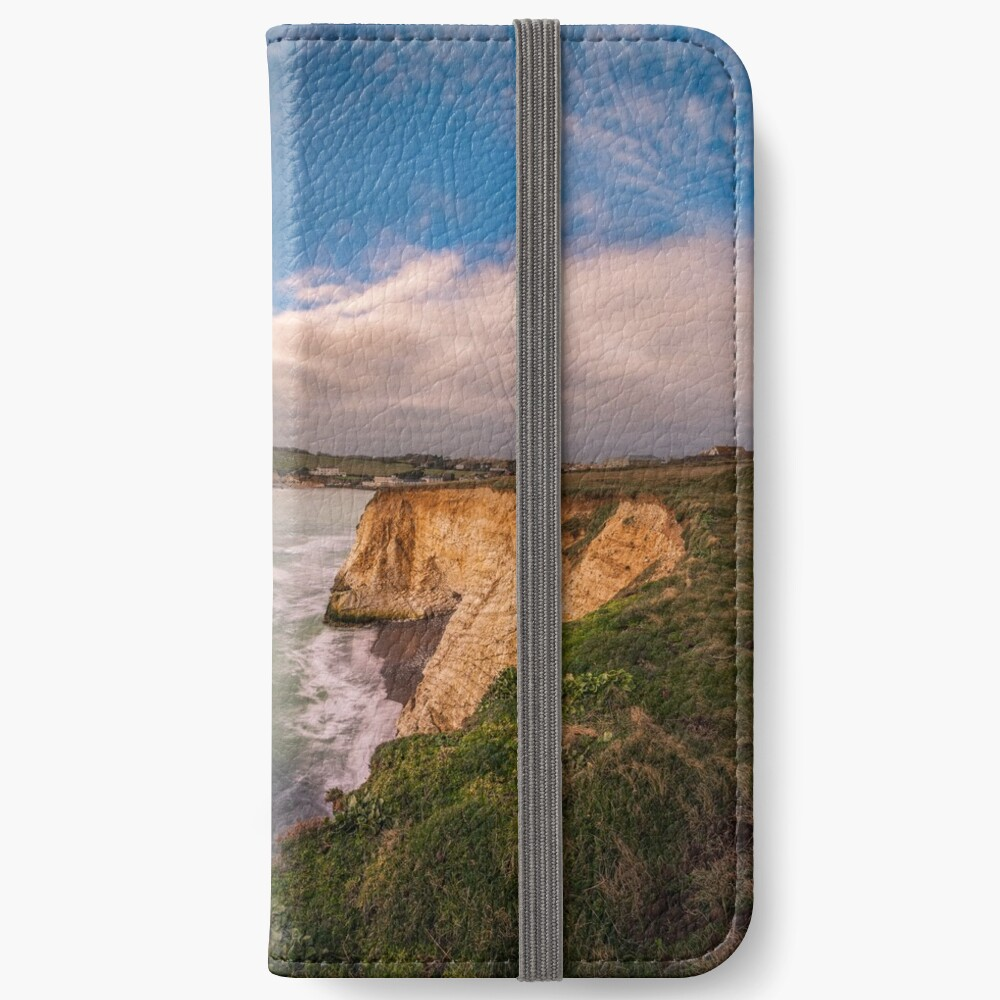 Freshwater Bay Panorama iPhone Wallet