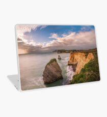 Freshwater Bay Panorama Laptop Skin