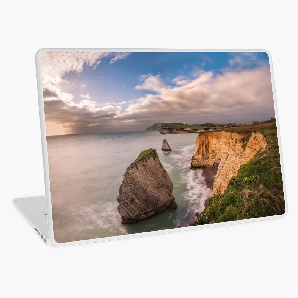 Freshwater Bay Panorama Laptop Skin