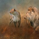 Savanna Lions by Brian Tarr